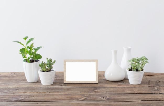 Groene planten met houten frames op oude houten plank