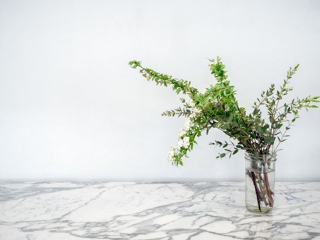 Groene planten met witte bloemen in glazen pot met water op marmeren tafel.