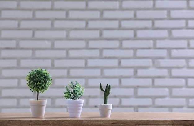 Groene pot op de houten tafel met witte muur.