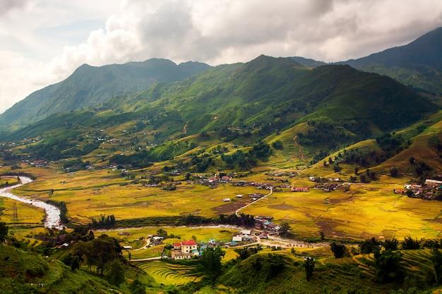 Groene rijstvelden op terrassen in muchangchai