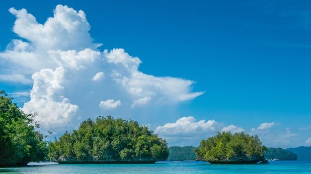 Groene rotsen in de buurt van batu lima, biodiversity resort op gam island, doberai eco resort op achtergrond, urai island, west-papoea, raja ampat, indonesië.