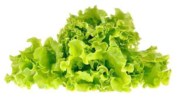 Groene salade geïsoleerd op een witte ruimte