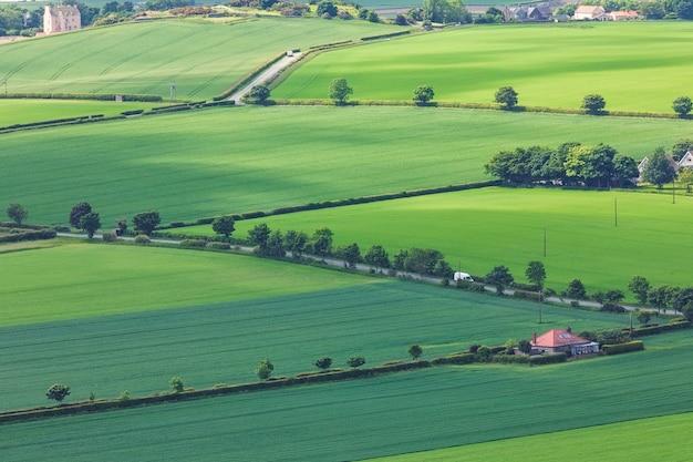 Groene schotse velden en bomen van top north berwick law in schotland