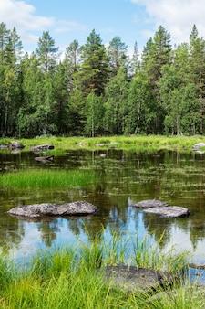 Groene sparren over een blauw meer met rotsen, zweden