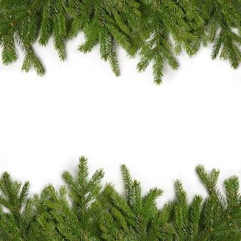 Groene takken van sparren op een geïsoleerd wit. wenskaart voor nieuwjaar en kerstmis. frame van groenblijvende twijgen van sparren.