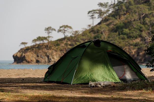 Groene tent die zich op het strand in de zonnige dag bevindt