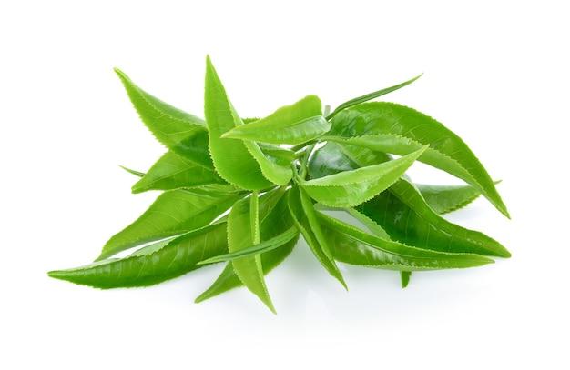 Groene thee blad geïsoleerd op wit