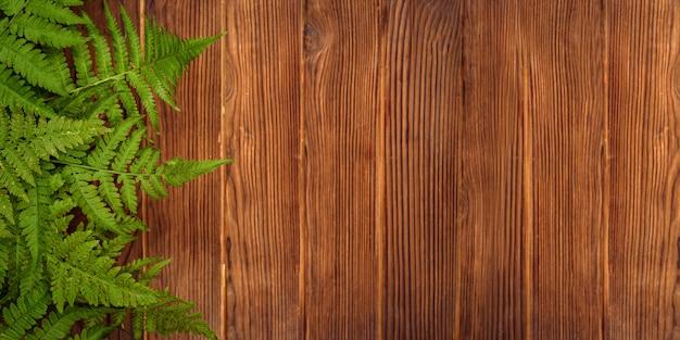 Groene varenbladeren op bruine eiken houtachtergrond met exemplaarruimte