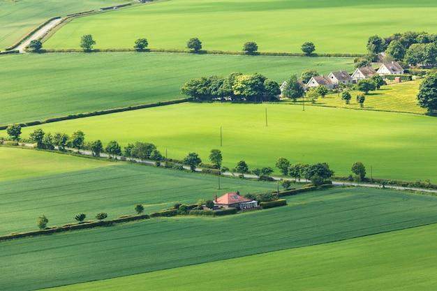 Groene velden en bomen van top north berwick law in schotland