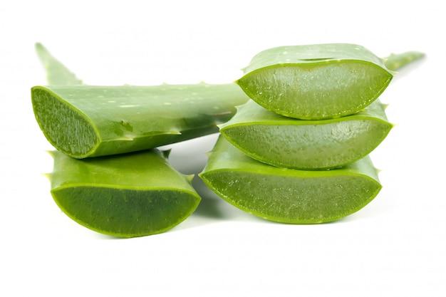 Groene verse aloë vera blad. kruiden voor gezond