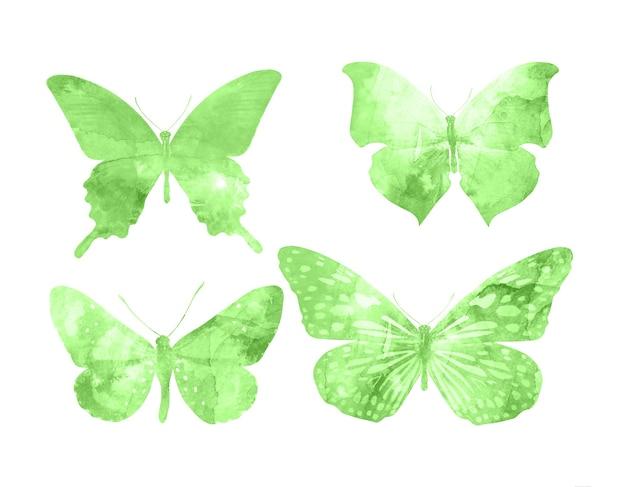 Groene vlinders geïsoleerd op een witte achtergrond. tropische motten. insecten voor ontwerp. aquarel verven
