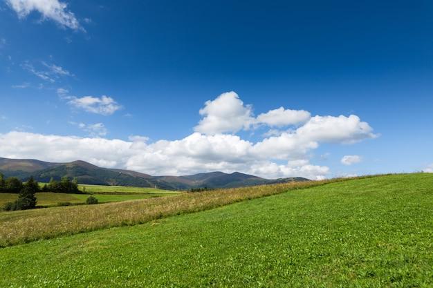 Groene weide, berg en blauwe hemel met wolken