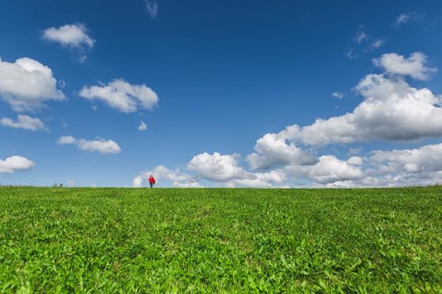 Groene weide en blauwe hemel met wolken