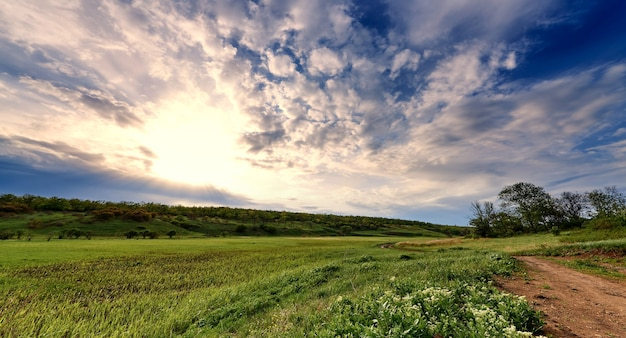 Groene weiden en pad onder een blauwe hemel met wolken in het zonlicht.