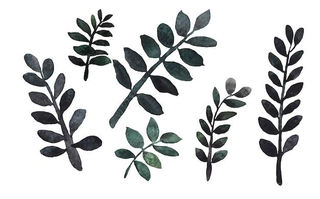 Groene zz zanzibar gem plant takje aquarel paintng