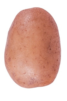 Groente geïsoleerd. een aardappel geïsoleerd op een witte achtergrond.