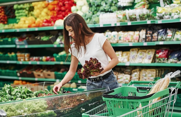 Groenten en fruit. vrouwelijke shopper in vrijetijdskleding in de markt op zoek naar producten.