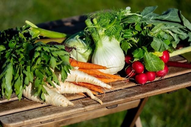 Groenten op een tafel op het platteland in het voorjaar
