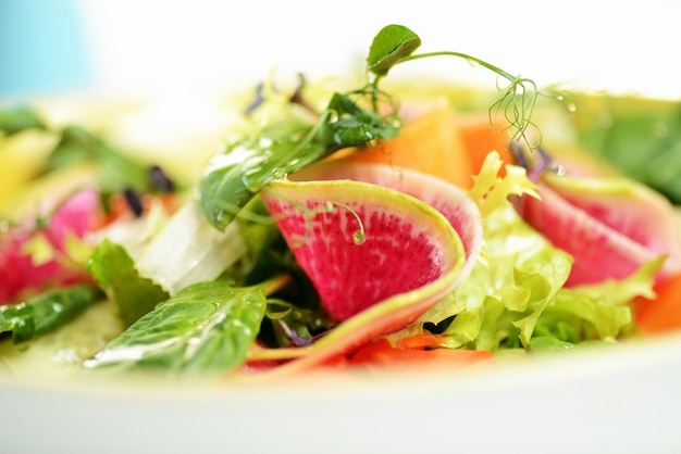 Groentesalade met daikon, komkommer, wortelen en spinazie.