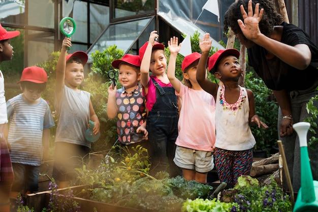 Groep divers kinderen het leren milieu bij landbouwbedrijf