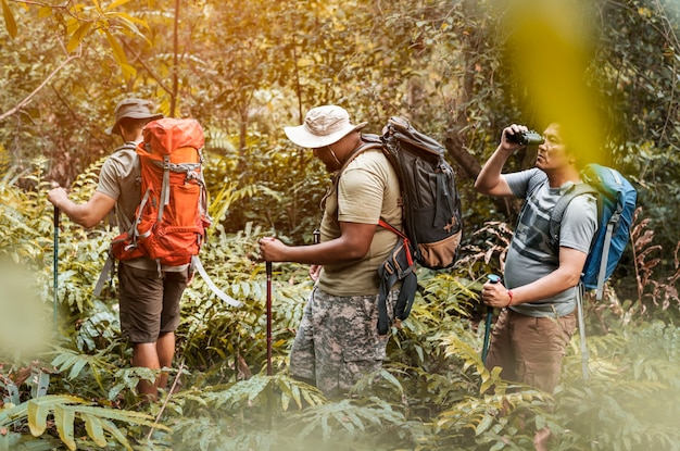 Groep diverse mensentrekking in het bos samen