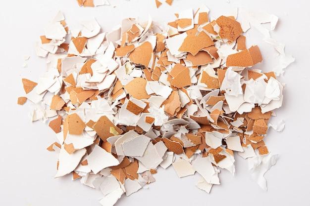 Groep gebroken eierschalen geïsoleerd op een witte achtergrond. eierschalen zijn bruin, broos en dun, gemakkelijk te breken. bovenaanzicht.