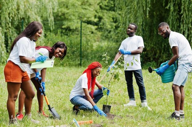 Groep gelukkige afrikaanse vrijwilligers