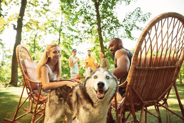 Groep gelukkige vrienden die bier en barbecuepartij hebben op zonnige dag.