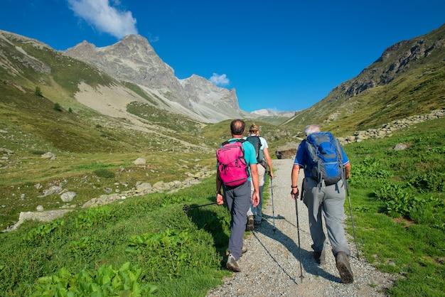 Groep gepensioneerde oudere wandelaars tijdens wandeling in de bergen