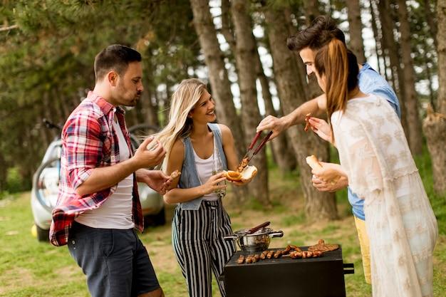 Groep jonge mensen die van barbecuepartij genieten in de aard
