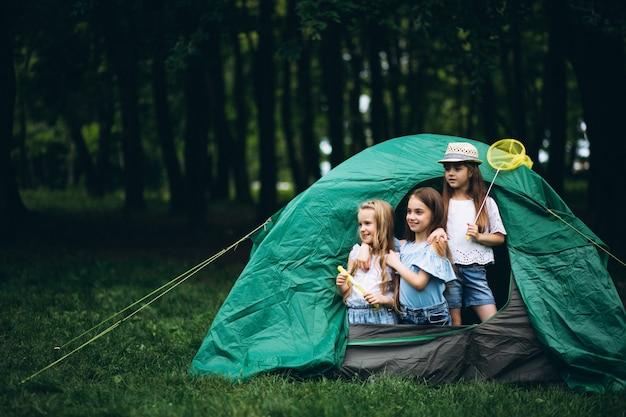 Groep meisjes die in bos kamperen