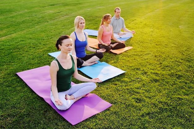 Groep mensen die yoga op het groene gebied doen