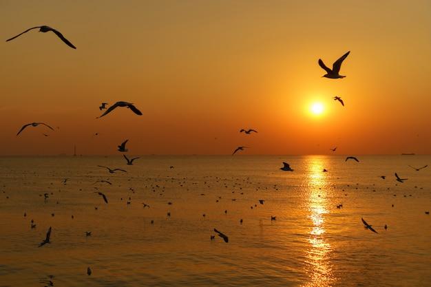 Groep silhouetzeemeeuwen die over het overzees op schemeringhemel vliegen bij zonsondergang