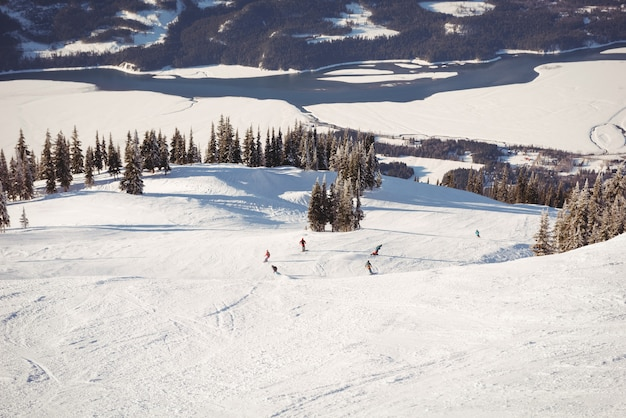Groep skiërs die in sneeuwalpen skiën
