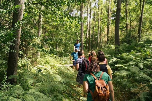 Groep vrienden die met rugzakken in bos lopen