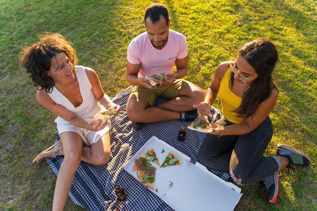 Groep vrienden die van pizza genieten die in park eten