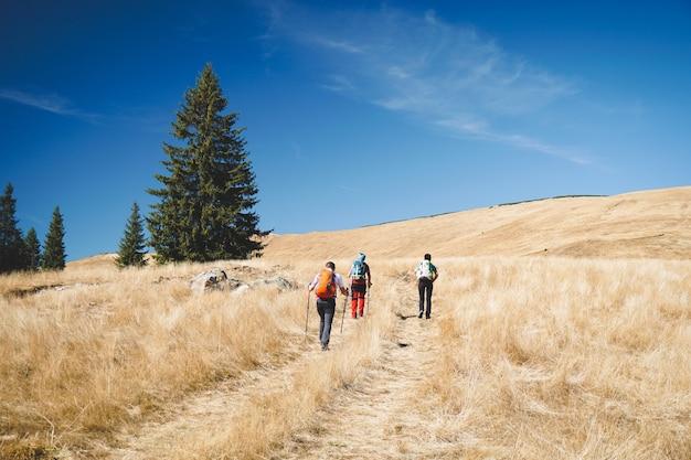 Groep wandelaars lopen door een veld van droog gras op een bewolkte dag
