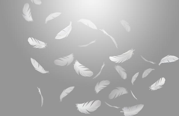 Groep witte vogelveren die in de lucht drijven.