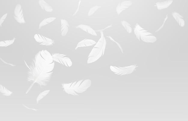 Groep witte vogelveren die neer in de lucht vallen.