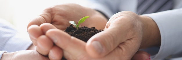 Groep zakenmensen die aarde vasthouden met kleine groene plant in hun handen close-up