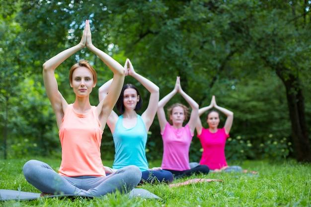 Groepsvrouwen in de lotushouding die yoga in het park doen