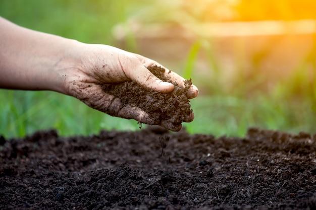 Grond in de hand voor planten