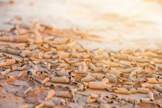Grond in droogte, bodemtextuur en droge modder, land met droge gebarsten grond