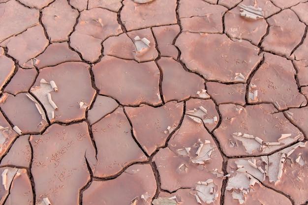 Grond in droogte, bodemtextuur en droge modder