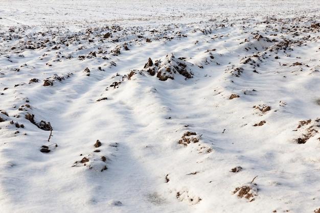Grond is bedekt met sneeuw
