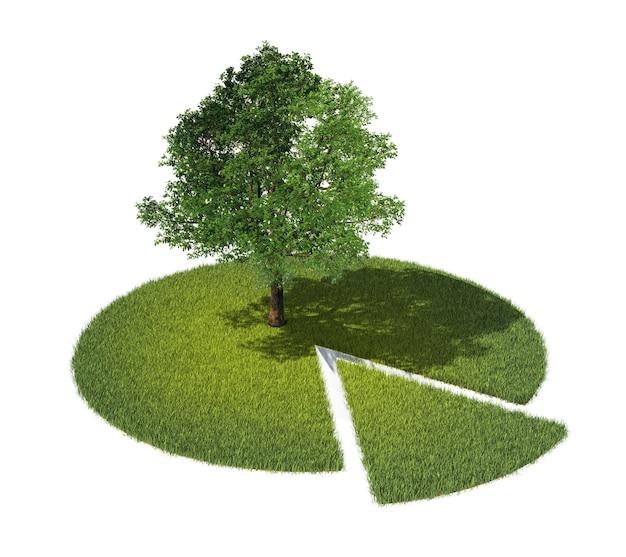Grond met gras en boom