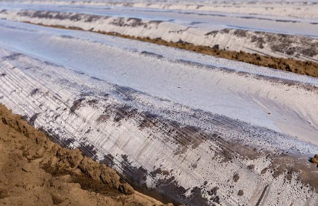 Grond met plastic beschermstrips voor planten in het veld, vroege lente, april, in noorwegen.