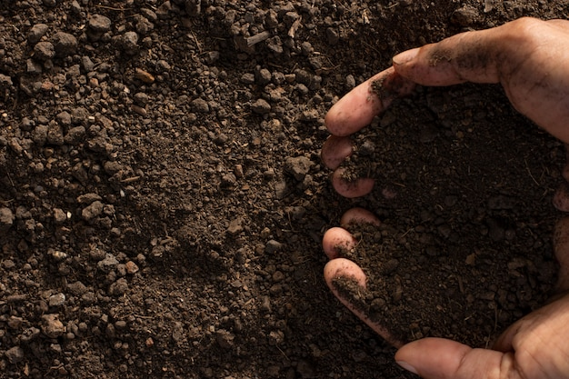 Grond voor het kweken van planten, gladde vruchtbare grond.
