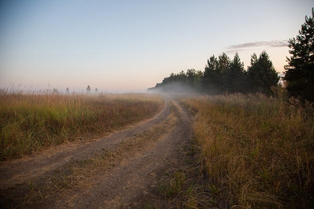 Grondweg in mist bij zomerzonsopgang