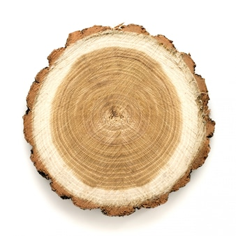 Groot cirkelvormig stuk houtdoorsnede met boomringtextuurpatroon en barsten